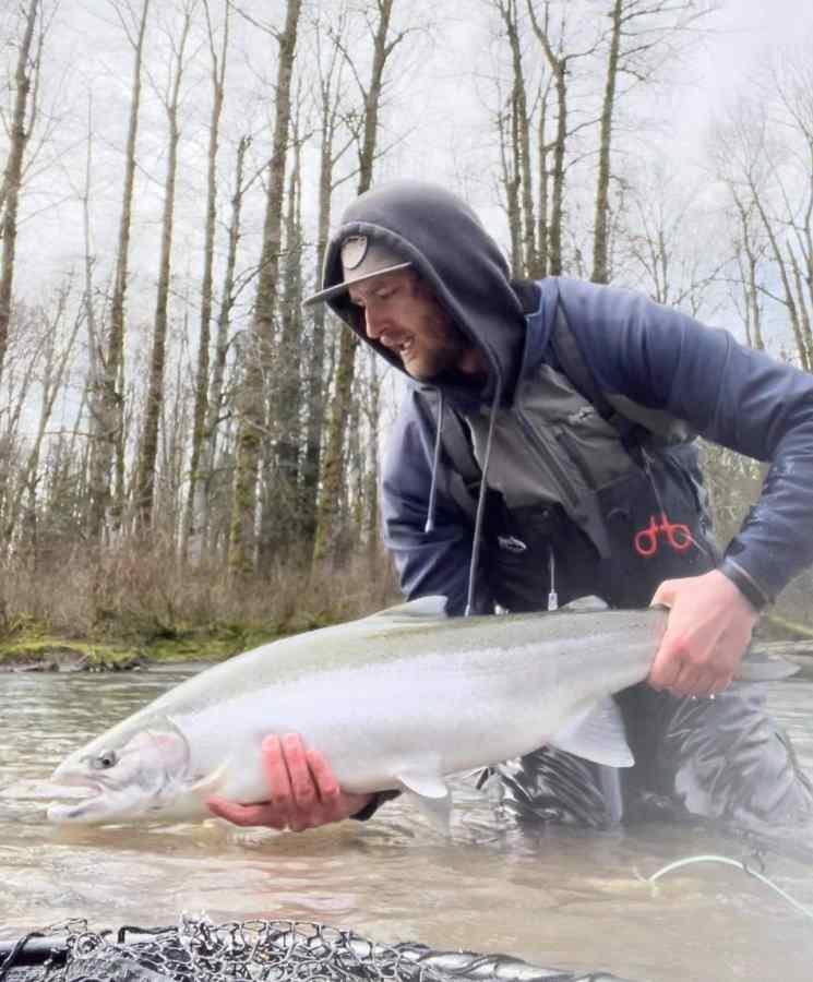 Fly Fishing for Steelhead in BC Canada