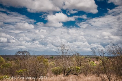 The Lowveld