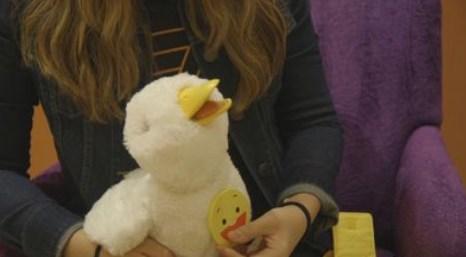 akıllı ördek