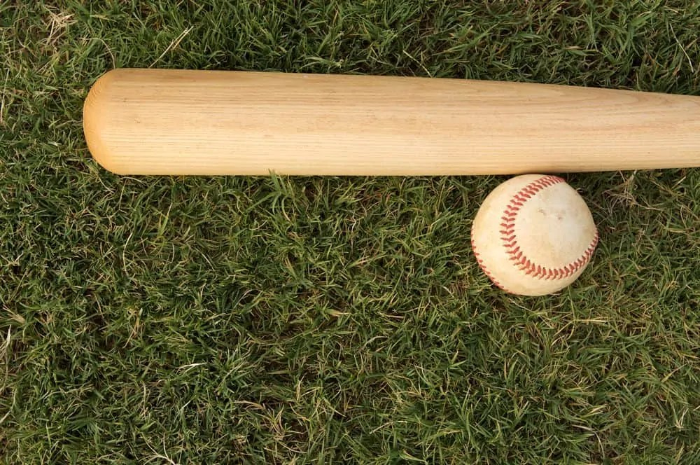21 Types Of Baseball Bats That Rip The Leather Off The Ball