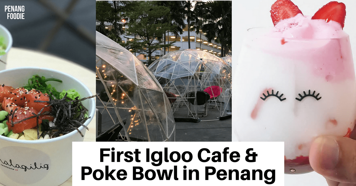Pilipala by Woodmanz: Igloo Cafe and Poke Bowl in Penang