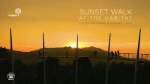Sunset walk at The Habitat