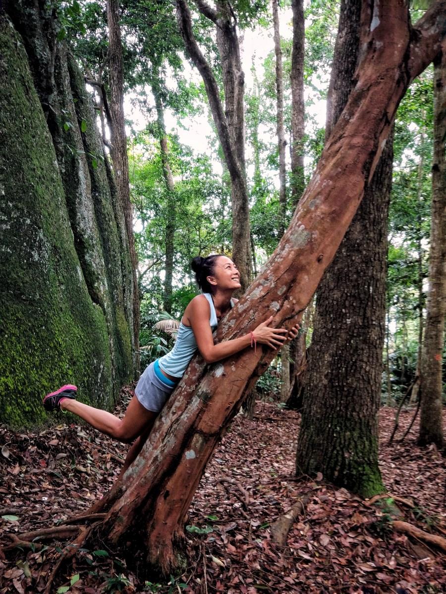 Top Outdoor Activities In Penang Nature Trails Wild Boar