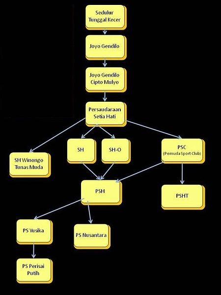 Perguruan Setia Hati Terate : perguruan, setia, terate, SEJARAH, PERKEMBANGAN, PERSAUDARAAN, SETIA, TERATE, (PSHT), Pencak, Silat