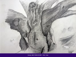 A009-PACSOA-Pencil-20130811 Students drawings - August 2013 - A009 PACSOA Pencil 20130811 - Students drawings – August 2013