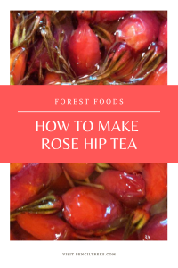 What to do with Rose hips