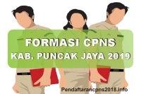 Formasi CPNS Kabupaten Puncak Jaya Tahun 2019