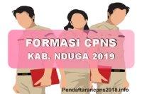 Hasil Seleksi Administrasi CPNS Kabupaten Nduga 2019