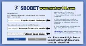 Tampilan untuk mengganti password - Tampilan untuk mengganti password