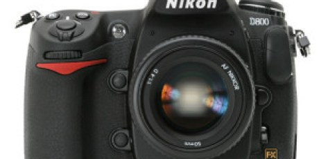 Nikon D800 36.3 MP Review