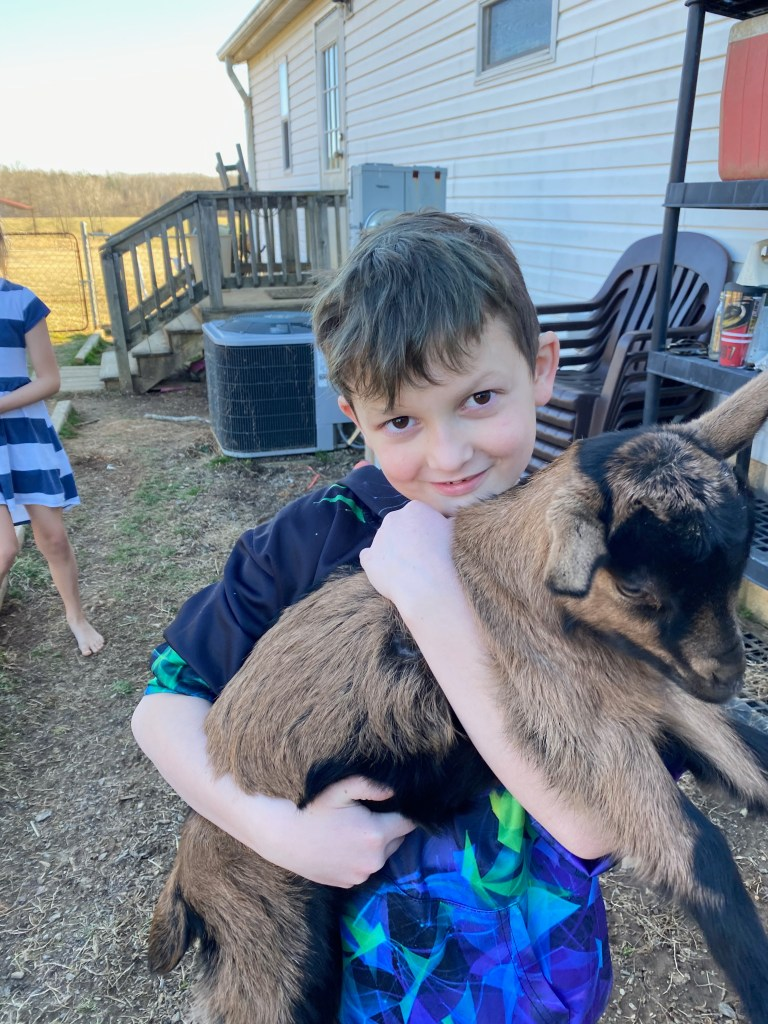 boy holding a baby goat