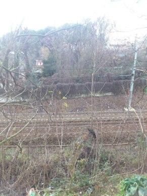 Sa 13/01/2013, 16:32: i binari dal piccolo parcheggio, a sud della tangenziale — presso Stazione di Monte Antenne.