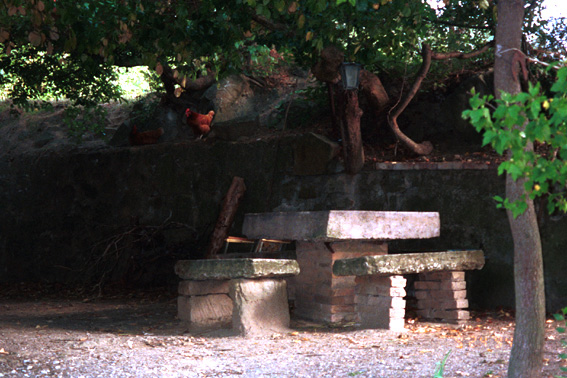 [image ALT: A small clearing with a rustic square stone table and three benches made of a slab of stone supported on two stacks of bricks, in deep shade under a trellised fruit tree; a chicken can be made out in the background, roosting on a ledge. It is the patio of a farmhouse near Todi, in Umbria (central Italy).]