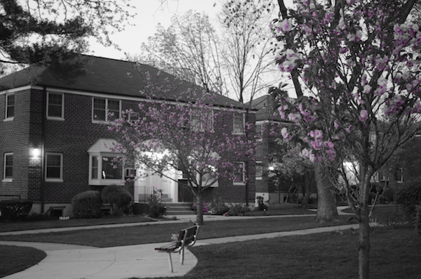 Fun With Black and White and Color Photography