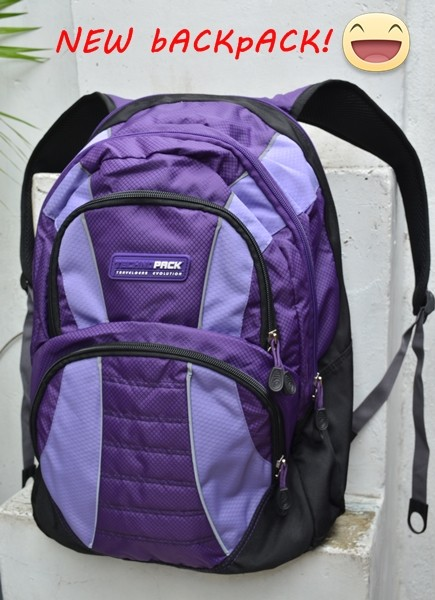 blogger travel backpack