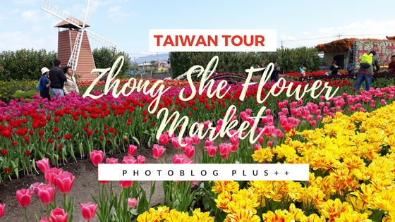 Taiwan Trending Destination: Zhong She Flower Market in Houli