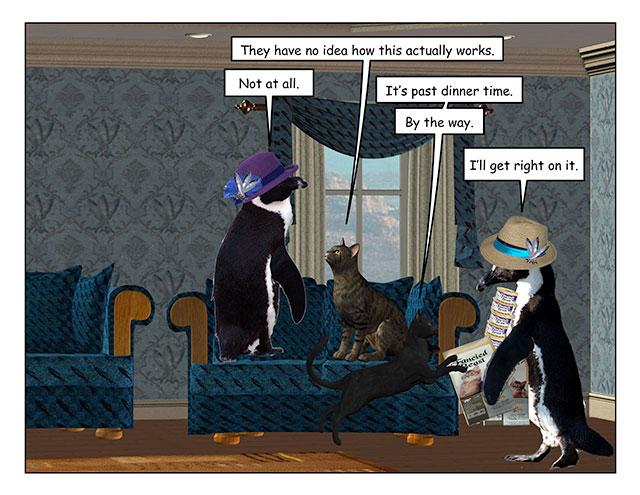 catsexplain-4.jpg