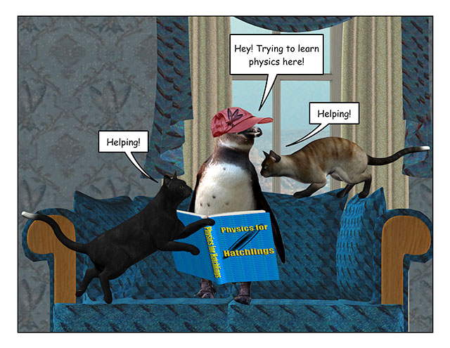 catshelping-3.jpg