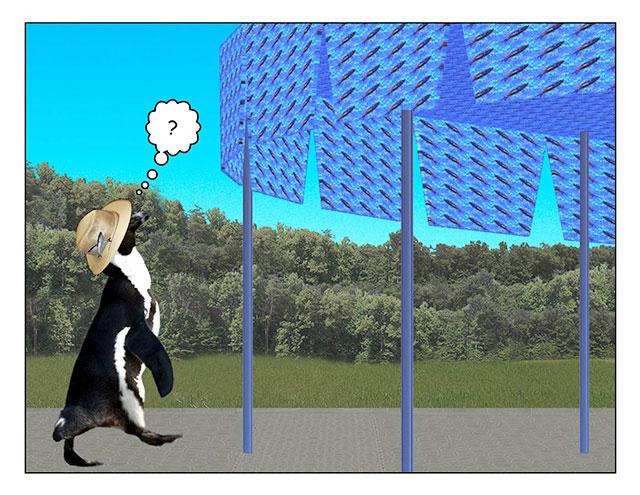 fromspace-1.jpg