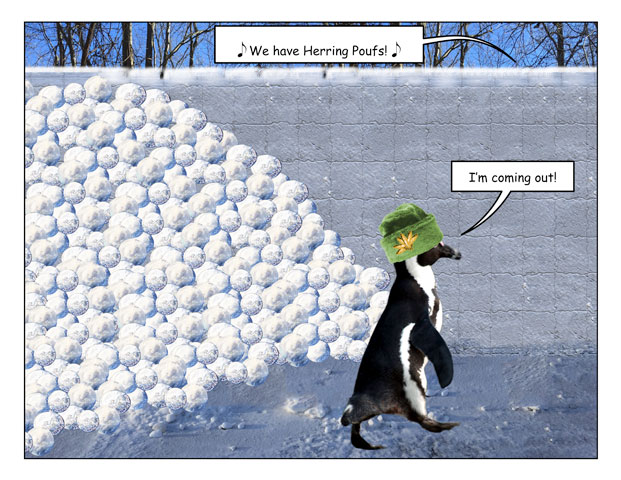 snowfort-4.jpg