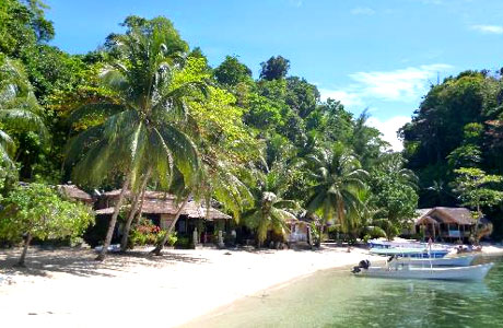 Black Marlin Dive Resort (sumber: blackmarlindiving.com)
