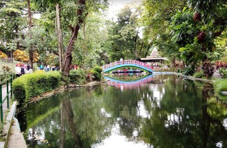 Info Terbaru Harga Tiket Masuk Dan Fasilitas Gembira Loka Zoo Yogyakarta Penginapan Net 2020