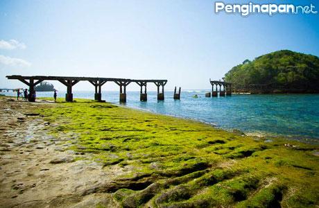 Pantai Jembatan Panjang Alternatif Wisata Alam Di Malang Selatan Penginapan Net 2020