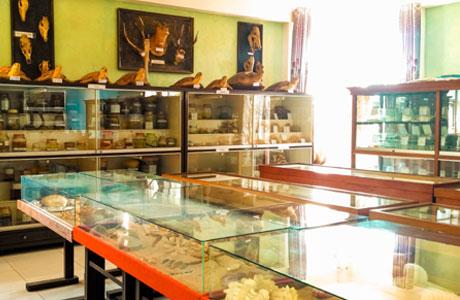 6 Museum Di Kota Malang Yang Menarik Untuk Dikunjungi Penginapan Net 2020