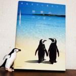 「絶景のペンギン」写真集の画像