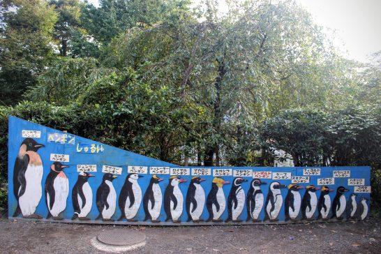 ペンギン18種類のイラスト