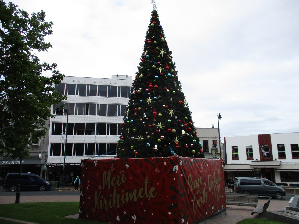 Christmas Greetings and tree in Dunedin