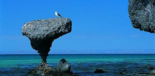 Certificada Balandra como playa limpia