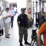 Dentro y fuera del edificio de la SEP, permanecieron los agentes de la SSPE, siempre acompañados con perros, lo que fue severamente criticado por lso docentes cabeños.