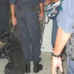La disidencia magisterial repudió el excesivo abuso policiaco contra maestros de Los Cabos.
