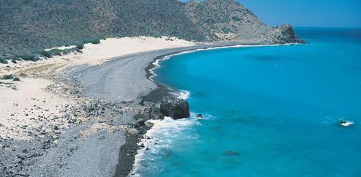 Advierten daños al ecosistema en Cabo Pulmo