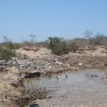 Estas pozas que hay en el arroyo Salto Seco no han sido vistas por los inspectores de ecología y por ello, el Director Carlos Narro, ignora lo que pasa en esta zona.