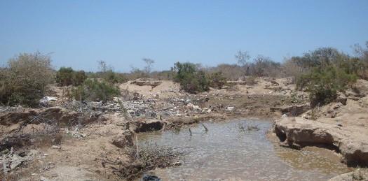 Desconoce Ecología la contaminación en Salto Seco