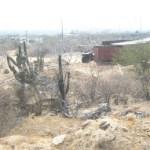 .- La Diputada local por el Distrito XVI Graciela Treviño, comento que ya se tiene la denuncia en el Congreso del Estado por el caso de las 115 hectáreas, por lo que como dicho terreno se ubica en su distrito, exige al órgano de Fiscalización que se investigue (Lupita Gómez)