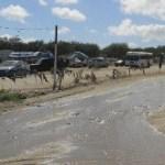 Este tipo de derrames está dañando el medio ambiente y lo peor del caso es que está siendo provocado por agua potable.