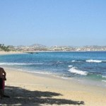 Esto es lo que en Cabo Pulmo no quieren los ambientalistas porque dañarían el parque marino-.