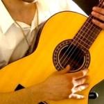 Del 9 al 12 de Noviembre tendrá lugar el Encuentro Nacional de Guitarristas La Paz 2010, que se celebrará en la Escuela de Música del Estado.