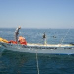 UABCS realiza estudios sobre la pesca ribereña con red de cerco y atracción con luz artificial.