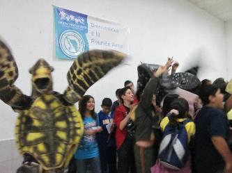 Se reunen en La Paz tortugueros del Noroeste