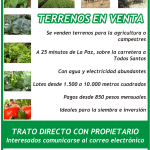 Anuncio publicitario de terrenos agrícolas en venta
