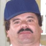 """Fotografía del """"Chapo"""""""