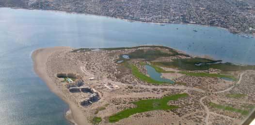 Niega SEMARNAT a Entre Mares trámite de cambio de uso de suelo del Mogote