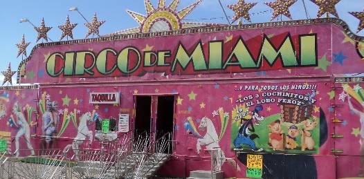 Irregular posesión y transporte de animales en el circo de Miami detecta PROFEPA
