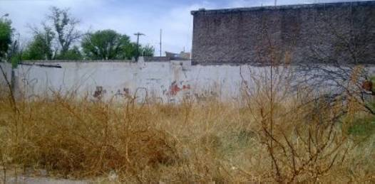 Inicia en la Diana Laura V el programa municipal de regularización de la tierra