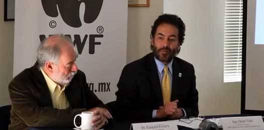 Divulga WWF video donde expone razones para frenar Cabo Cortés