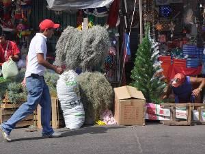 Vigilarán que artículos importados para Día de Muertos y Navidad cumplan las Normas Mexicanas